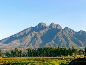 volcanoes rwanda safari
